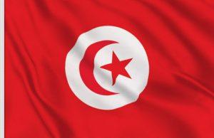 distributeurs-logiciels-qualite-gamme-qalitel-scoqi - drapeau-tunisien