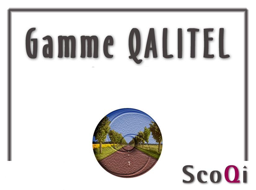 Logigramme de présentation offre commerciale de la Gamme QALITEL de SCOQI